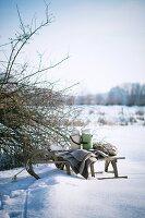 Schlitten mit Decke und Thermoskannen in winterlicher Landschaft