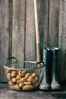 Stilleben mit Kartoffelnkorb, Gummistiefeln & Spaten
