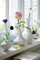 Summer flowers in various white vases on a window sill