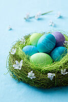 Coloured eggs in a green Easter nest