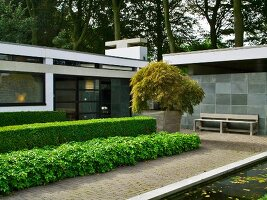 Modern bungalow with landscaped courtyard garden