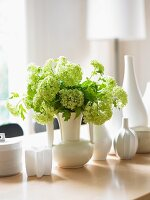 Viburnum in a White Vase with Assorted Vases on a Table