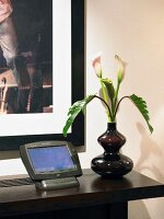 Dark wood shelf against wall with vase of flowers and control unit screen