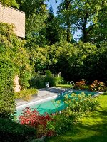 Pool in sunny garden in front of house