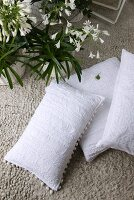 White scatter cushions and potted flowering plants on gravel concrete floor of balcony