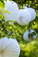 Lampions als Deko für ein Gartenfest