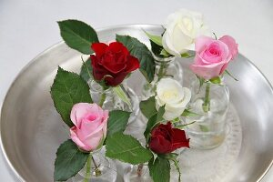 Roses of different colours in glass vases on tray