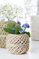 Balls of twine used as vases containing forget-me-nots and gypsophila