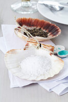 Salt and pepper in scallop shells