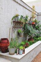 Plants growing in various pots above a raised concrete planter box