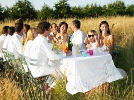 People having dinner in a field