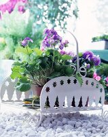 Geranium pots in white metal decorative stand on gravel
