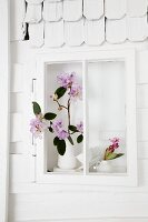 Rhododendron (variety: 'Albert Schweitzer') in window niche of white-painted model house