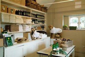 White, country-house-style dresser holding many bottles and stacks of medical dressings for dogs modelled on soft toys