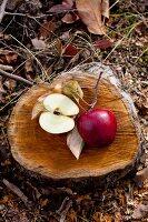 Apfel auf einem Baumstamm
