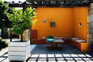 Small lemon tree in wooden planter in front of terrace area with yellow limewashed walls and pergola