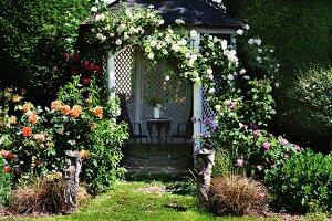 Open summerhouse covered in climbing roses in flowering garden