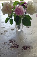 Glass vase of cut roses next to cat's paw prints in concrete floor