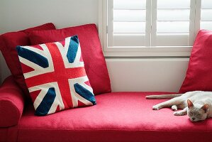 Cushions and sleeping cat on elegant, red daybed below window