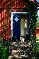 Small dog on stone steps leading to bright blue front door of wooden house
