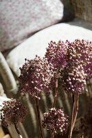 Verblühte Blumenstengel und Sessel mit losen Polstern