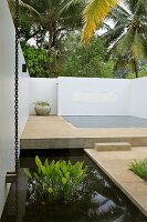 Geometric pool area with water plants in pond in foreground; steps leading to minimalist pool surrounded by white walls