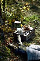 Crockery on upturned wooden crate and blanket on tree trunk as picnic spot in sunny woodland clearing