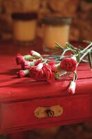 Carnations on wooden table painted deep pink
