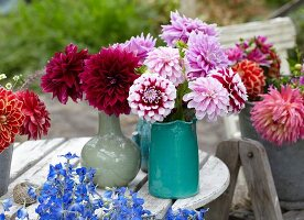 Summer bouquets of dahlias