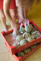 Woman next to cardboard crates of melons on yellow-tiled floor