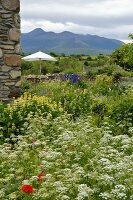 Corner of rustic Italian farmhouse and wild garden with seating and white parasol on terrace