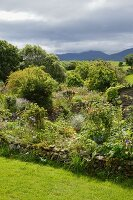 Cottage garden and view of landscape below a dramatic sky