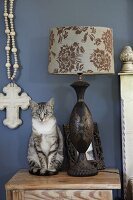 Cat sitting next to table lamp with patterned lampshade on bedside table against blue-painted wall