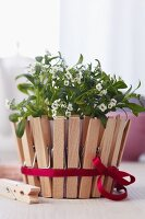 Plant pot decorated with clothes pegs & satin ribbon