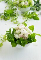 Arrangement of white roses and mint leaves in china bowl