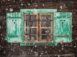 Green-painted shutters on window with metal lattice