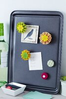 Colourful paper flowers decorating magnets on note board