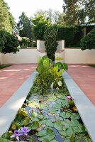 Water lilies in modern pond on terracotta terrace with adjacent gardens