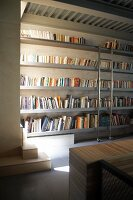 Minimalist bookcase with metal library ladder lit from one side