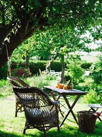 Seating area with wicker chair & small table beneath shady tree in garden