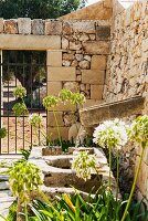 Weathered stone trough and simple water spout on stone wall in Mediterranean garden