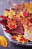 Wicker tray of colourful, dried and painted autumn leaves