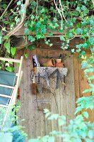 Wall shelf on climber-covered shed - quarter-circle log with practical hooks for all types of useful equipment