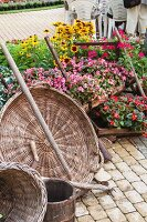 Arrangement of wicker baskets and flowering plants
