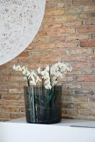 Orchids in smoked glass vase against brick wall; detail of spherical lampshade