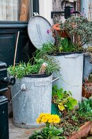 Old rubbish bins used as planters
