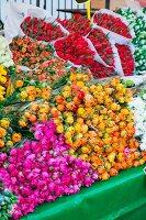 Bouquets of ranunculus & tulips on flower market (Netherlands)