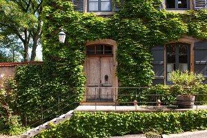 Treppenaufgang vor beranktem Landsitz in sommerlicher Stimmung