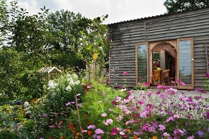 Simple wooden cabin in flowering, summery garden
