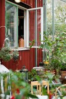 Many potted plants in glazed extension to wooden cabin